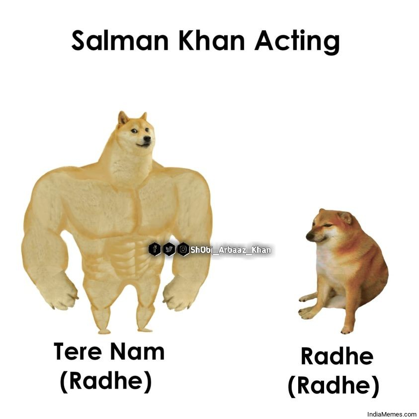 Salman Khan acting Radhe in Tere Naam vs Radhe in Radhe meme.jpg