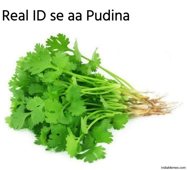 Real ID se aa Pudina meme.jpg